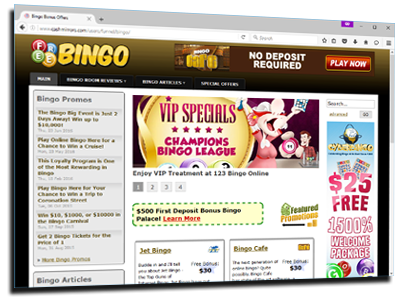 Bingo Website 45121-36