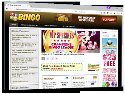 Bingo Website 45121-36